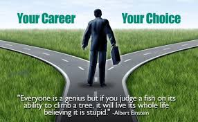 How To Find The Best Career